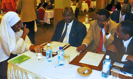Image of delegates attending HPP workshop