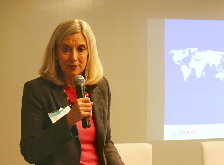 Photo of Sarah Clark introducing the topic.